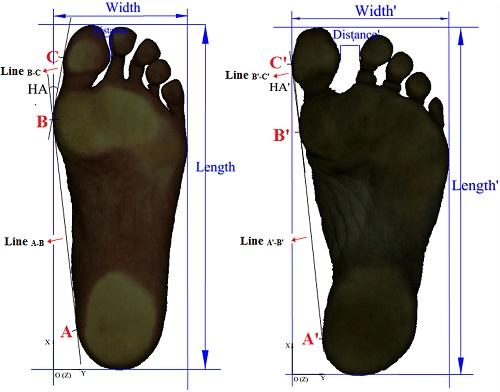 barefoot runner feet