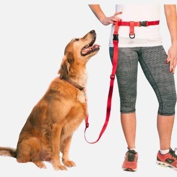 Adjustable Hands Free Dog Leash