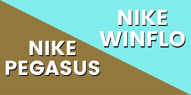 Nike Pegasus Vs Nike Winflo HI-min