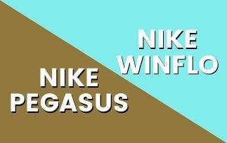 Nike Pegasus Vs Nike Winflo-min